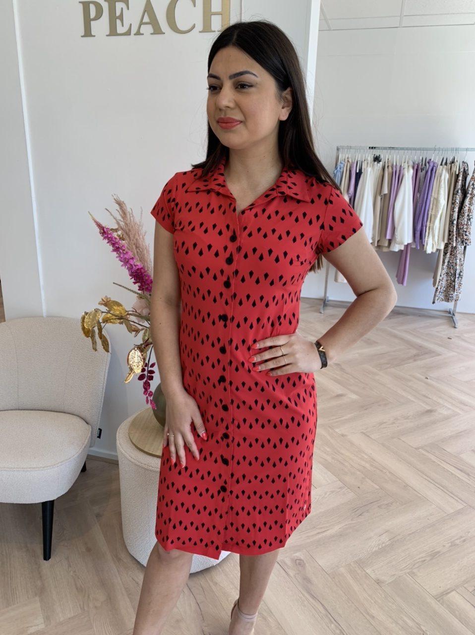 My Pashion Dantionea Dress